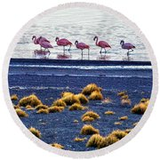 Round Beach Towel featuring the photograph Flamingos At Torres Del Paine by Bernardo Galmarini