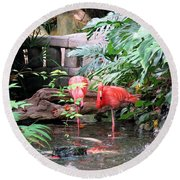 Flamingos Round Beach Towel by Betty Buller Whitehead