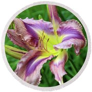 Round Beach Towel featuring the digital art Flight Of Orchids Daylily by Eva Kaufman