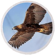 Flight Of The Golden Eagle Round Beach Towel