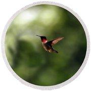 Flight Of The Hummingbird Round Beach Towel