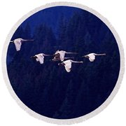 Flight Of The Swans Round Beach Towel by Sharon Talson