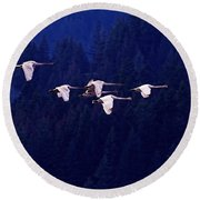 Flight Of The Swans Round Beach Towel