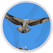 Round Beach Towel featuring the photograph Flight Practice Over The Nest by Debbie Stahre