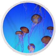 Floating Jellyfish Ballet Round Beach Towel