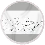 Flock Of Beautiful Migratory Lapwing Birds In Clear Winter Sky I Round Beach Towel