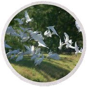 Flock Of Egrets In Flight Round Beach Towel
