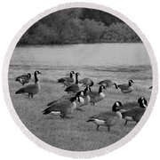 Flock Of Geese Round Beach Towel