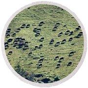 Flock Of Sheep Round Beach Towel
