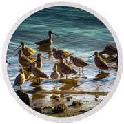 Flock Of Shorebirds Round Beach Towel
