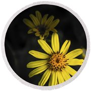 Flora In Yellow Round Beach Towel