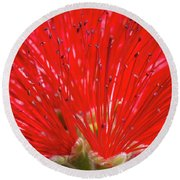 Floral Red Round Beach Towel