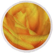 Round Beach Towel featuring the photograph Floral Yellow Rose Blossom by Shelley Neff