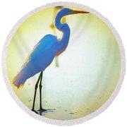Florida Atlantic Beach Ocean Birds  Round Beach Towel