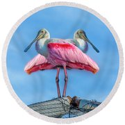 Florida Keys Roseate Spoonbill Round Beach Towel