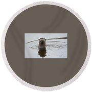 Florida Otter Round Beach Towel