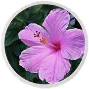 Florida Pink Hibiscus Round Beach Towel