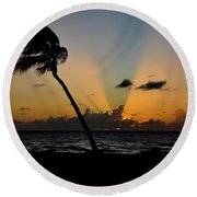 Round Beach Towel featuring the photograph Florida Sunrise Palm by Kelly Wade