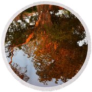 Florida Winter Reflection Round Beach Towel