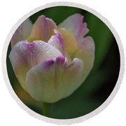 Round Beach Towel featuring the photograph Flower 654853 by Timothy Latta