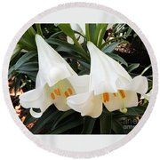 Round Beach Towel featuring the photograph Flower Bells Twins by Jasna Gopic