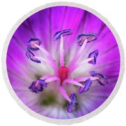 Flower Color Explosion Round Beach Towel