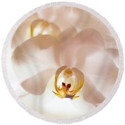 Round Beach Towel featuring the photograph Flowers Delight- by JD Mims