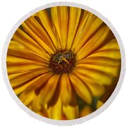 The Flower Inspector Round Beach Towel