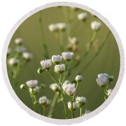 Round Beach Towel featuring the photograph Flower Drops by Heidi Poulin