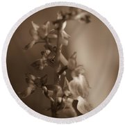 Round Beach Towel featuring the photograph Flower by Keith Elliott
