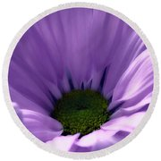 Flower Macro Beauty 4 Round Beach Towel
