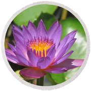 Flower Of The Lilly Round Beach Towel