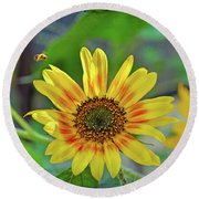 Round Beach Towel featuring the photograph Flower Of The Sun by Kerri Farley