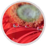 Flower Reflections Round Beach Towel