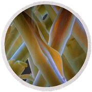 Flower Stems Round Beach Towel