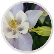 Round Beach Towel featuring the photograph Flower With Bud by Jasna Gopic