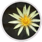 Flowerburst Round Beach Towel by Joe Bonita