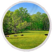 Flowering Cow Pasture Round Beach Towel