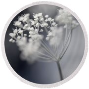 Round Beach Towel featuring the photograph Flowering Dill Cluster by Elena Elisseeva