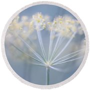 Round Beach Towel featuring the photograph Flowering Dill by Elena Elisseeva