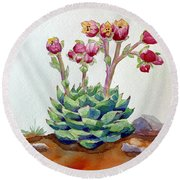 Flowering Succulent Round Beach Towel