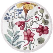 Flowers From From Histoire Des Insectes De L'europe Round Beach Towel