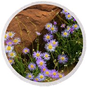 Flowers In The Rocks Round Beach Towel by Darren White