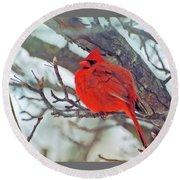 Fluffed Up Male Cardinal Round Beach Towel