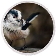Fluffy The Long-tailed Tit  Round Beach Towel