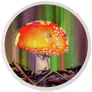 Fly Agaric #g7 Round Beach Towel