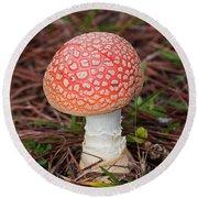 Fly Agaric Mushroom Round Beach Towel by Kenneth Albin