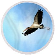 Fly By 2 Round Beach Towel