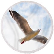 Flying Away From The Madness Round Beach Towel