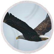 Flying Bald Eagle Round Beach Towel